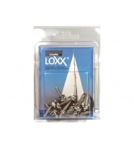 10 VITI MORDENTI LOXX - TENAX IN BLISTER H 12 MM